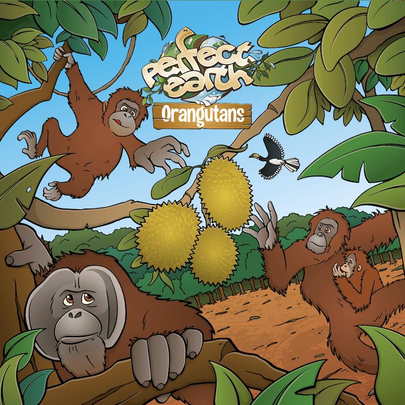 Perfect Earth: Orangutans