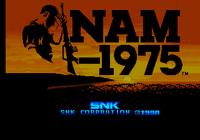 Video Game: NAM-1975