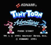 Video Game: Tiny Toon Adventures