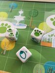 Board Game: Outfoxed!