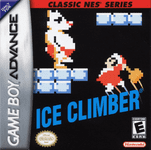Video Game: Ice Climber