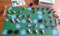 Board Game: Beasty Borders