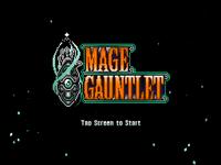 Video Game: Mage Gauntlet