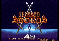 Video Game: Crossed Swords