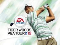 Video Game: Tiger Woods PGA Tour 12