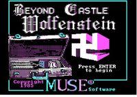 Video Game: Beyond Castle Wolfenstein