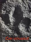 RPG Item: Chronosaurus