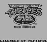 Video Game: Teenage Mutant Ninja Turtles II: Back from the Sewers