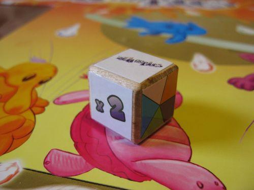 Board Game: Whoopies