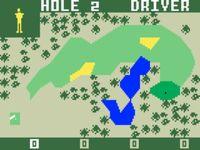 Video Game: PGA Golf