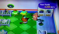 Video Game: Animal Crossing