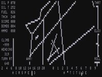 Video Game: FS1 Flight Simulator