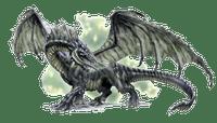 Character: Black Dragon