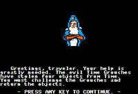 Video Game: The Cave of Time
