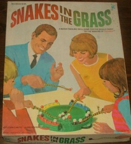 Board Game: Snakes in the Grass