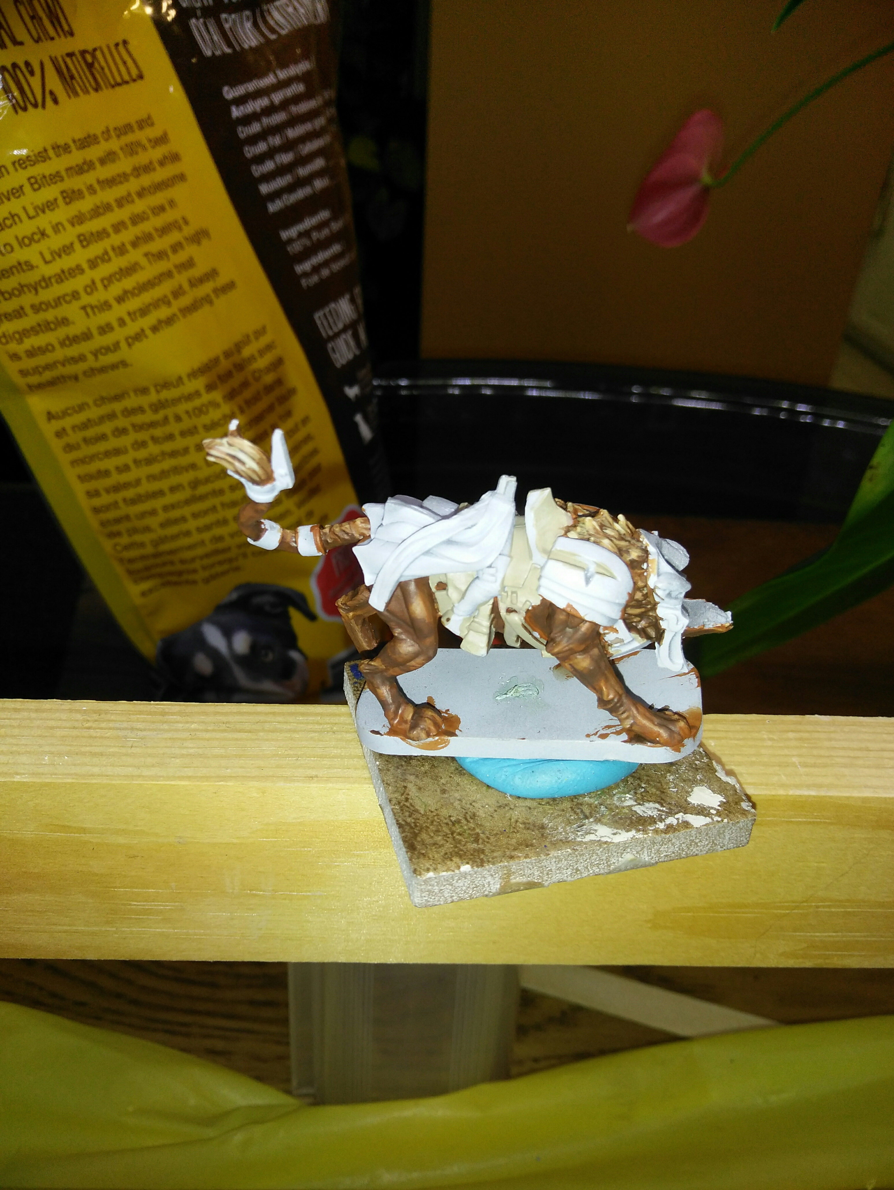 What are you painting at the moment? | Miniature Painters