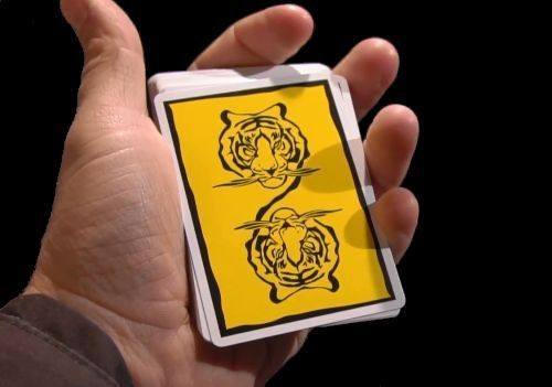 cardistry basic moves