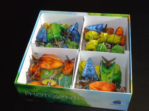 iSlaytheDragon com Reviews Photosynthesis   Photosynthesis