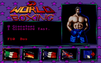 Video Game: 3D World Boxing