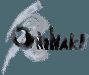 Video Game: ONINAKI