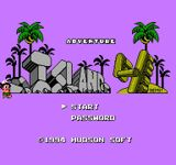 Video Game: Adventure Island IV