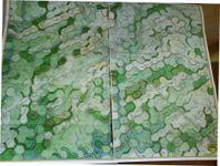 El Carto's Variant Maps