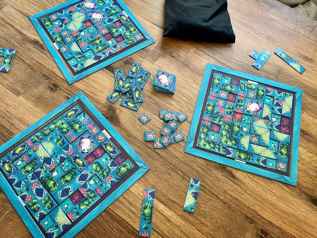 Board Game: Kodama Forest