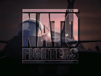 Video Game: Jane's ATF: NATO Fighters