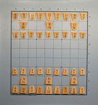 Board Game: Sho Shogi