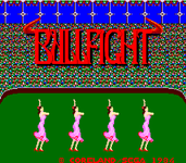 Video Game: Bull Fight