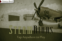 Video Game: SteamBirds