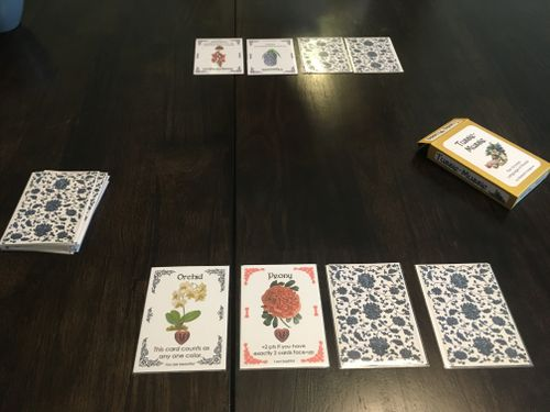 Board Game: Tussie Mussie