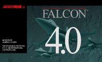 Video Game: Falcon 4.0