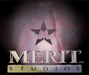 Video Game Publisher: Merit Software