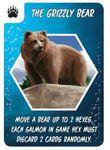 Board Game: Salmon Run: The Grizzly Bear