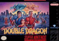 Video Game: Super Double Dragon