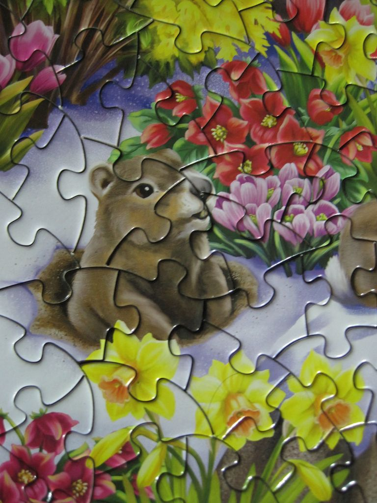 Plant a Puzzle Good Things in Life are not Things 750 Piece Puzzle plus Bonus Mini puzzle 750 Piece Puzzle ceaco Good Things in Life 750