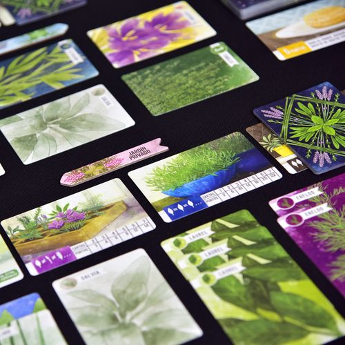 Board Game: Herbaceous