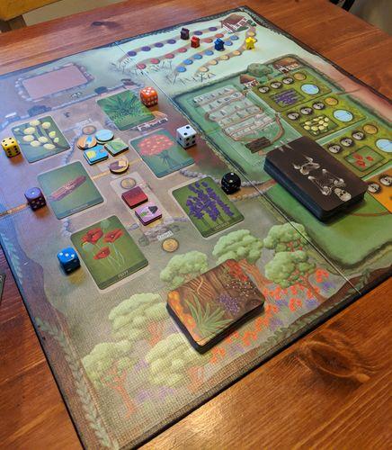 Board Game: Apothecary