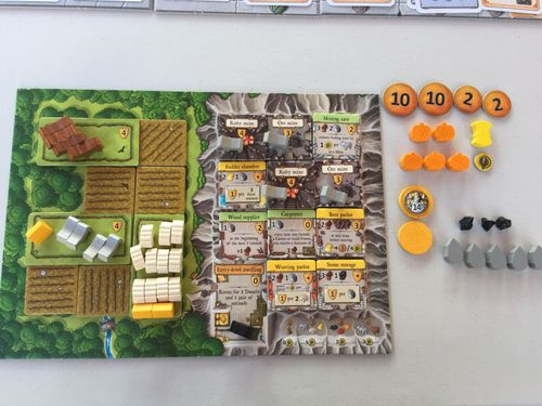 Caverna - Solo end game player board pics   VideoGameGeek