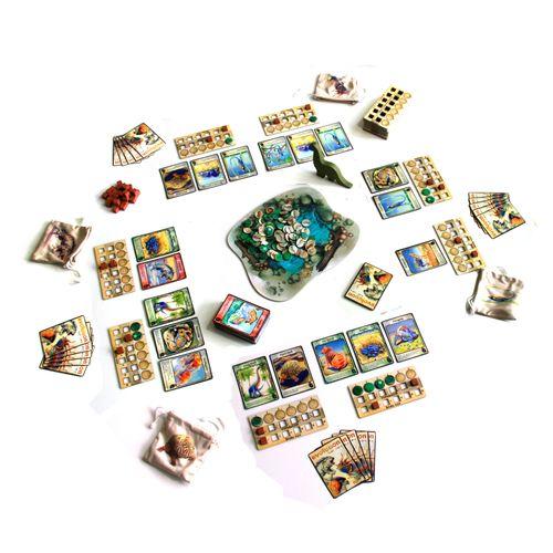 Board Game: Evolution