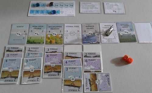 Board Game: Snowbirds
