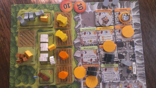 Caverna - Solo end game player board pics | BoardGameGeek