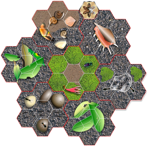 Board Game: Hermit Crab Havoc