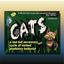 Board Game: CATS: a sad but necessary cycle of violent predatory behavior