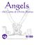 RPG Item: Angels: the Game of Divine Stories