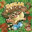 Board Game: Sugar Gliders