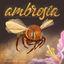 Board Game: Ambrosia