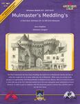 RPG Item: CCC-SALT-02-01: Mulmaster's Meddling's