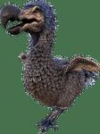 Character: Dodo (ARK)